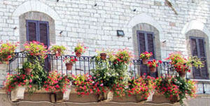 Balcony in Assisi